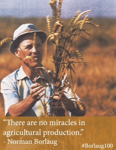 Borlaug100_no simple miracles